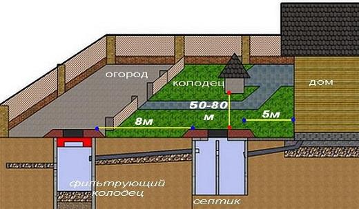 На изображении показана примерная схема расположения септика на участке